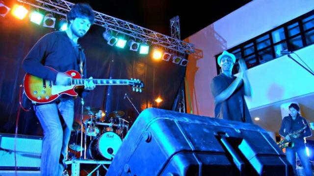 bowman2011_
